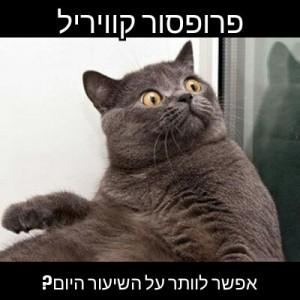 תמונה: בן מקהילת הקוראים בישראל